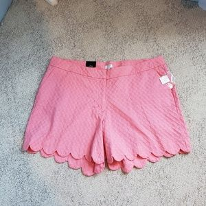 💥NWT Crown & Ivy scalloped textured Sz 24W shorts